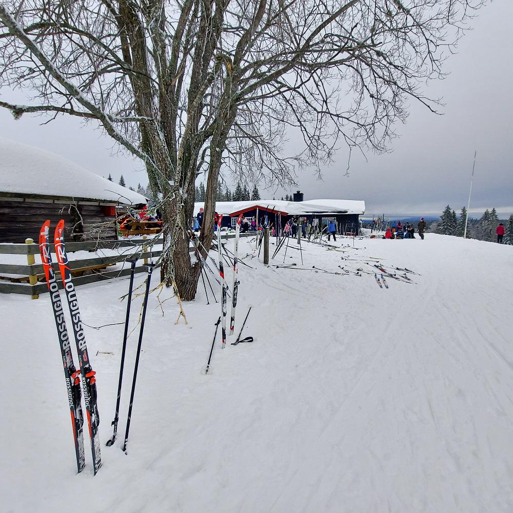 Skolens årlige skidag - Steinerskolen på Hedemarken